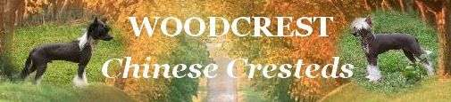 Woodcrest Chinese Cresteds